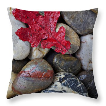 Red Leaf Wet Stones Throw Pillow