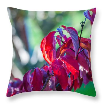 Red Leaves - 9592 Throw Pillow