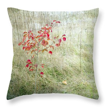 Red Leaves Amongst Grass Throw Pillow