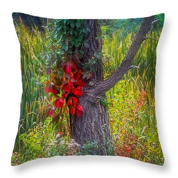Red Leaves And Vines On Tree In Forest Of Reeds Throw Pillow