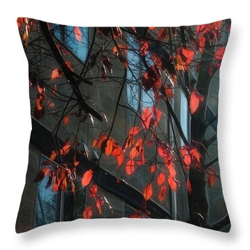 Throw Pillow featuring the photograph Red Leaves by Yulia Kazansky