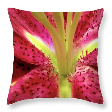 Red Lily Closeup Throw Pillow