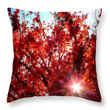 Throw Pillow featuring the photograph Red Maple Burst by Wendy McKennon