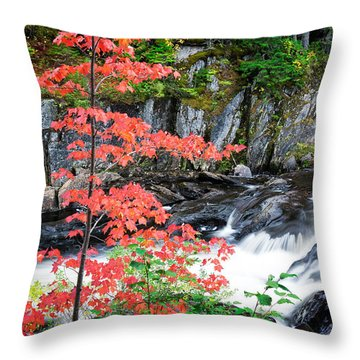 Throw Pillow featuring the photograph Red Maple Gulf Hagas Me. by Michael Hubley