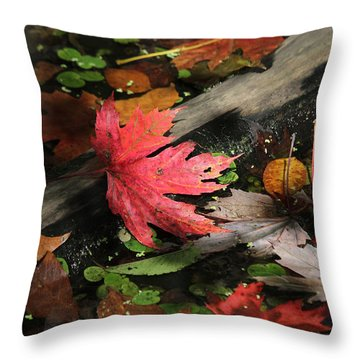 Throw Pillow featuring the photograph Red Maple Leaf In Pond by Doris Potter