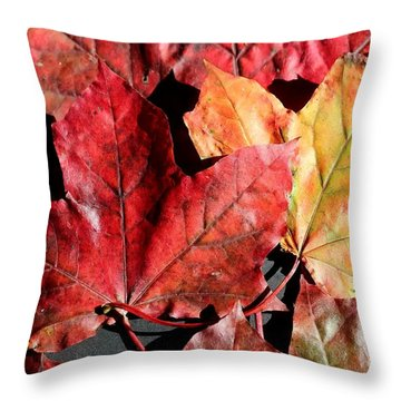 Red Maple Leaves Digital Painting Throw Pillow by Barbara Griffin