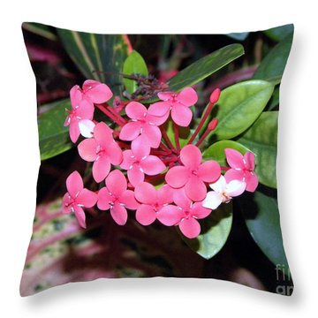 Red Maui Ixora Throw Pillow