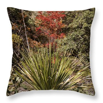 Throw Pillow featuring the photograph Red by Melany Sarafis