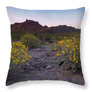 Red Mountain Dusk Throw Pillow by Sue Cullumber