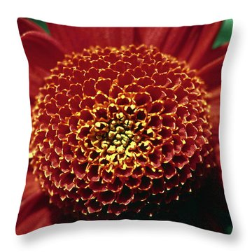 Red Mum Center Throw Pillow by Sally Weigand