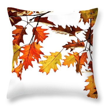 Throw Pillow featuring the photograph Red Oak Leaves In Fall by Tim Gainey