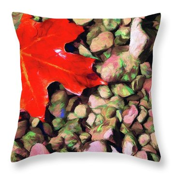Red On The Rocks Throw Pillow by Jeffrey Kolker