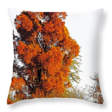 Red-orange Fall Tree Throw Pillow by Craig Walters