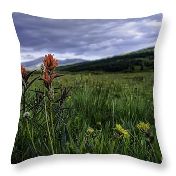 Red Paintbrush Throw Pillow