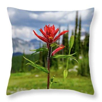 Red Paintbrush On Mount Revelstoke Throw Pillow