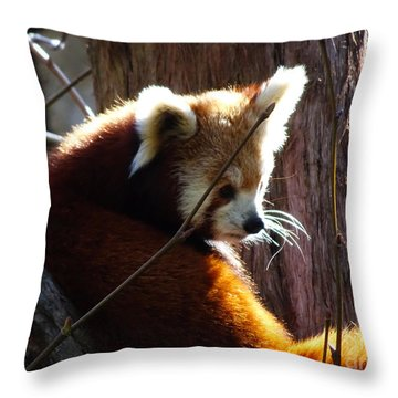 Throw Pillow featuring the photograph Red Panda by Angela DeFrias
