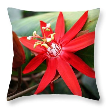 Red Passion Flower Throw Pillow