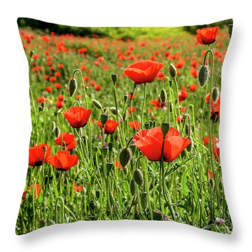 red poppies flower and seeds Israel Throw Pillow