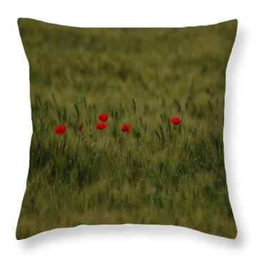 Red Poppies In Meadow Throw Pillow