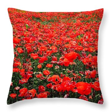 Red Poppies Throw Pillow by Juergen Weiss