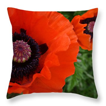 Red Poppies Throw Pillow by Lynne Guimond Sabean