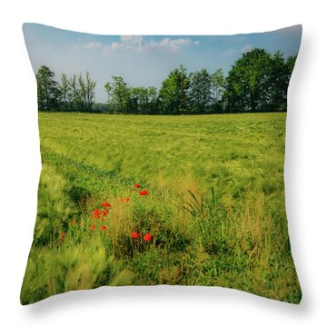 Red Poppies On A Green Wheat Field Throw Pillow