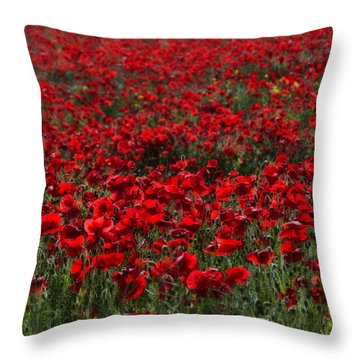 Red Poppies Throw Pillow by Svetlana Sewell