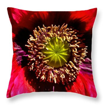 Red Poppy 014 Throw Pillow