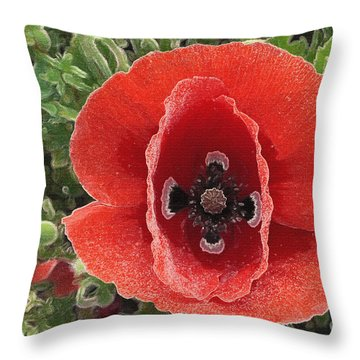 Throw Pillow featuring the photograph Red Poppy Flower 2 by Jean Bernard Roussilhe