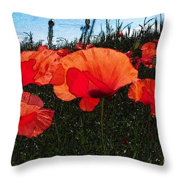 Throw Pillow featuring the photograph Red Poppy Flowers In Grassland by Jean Bernard Roussilhe