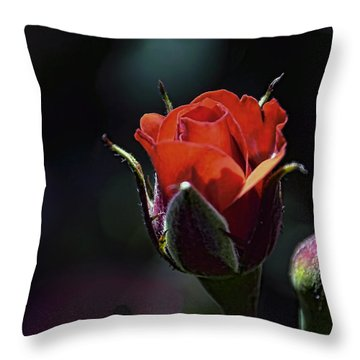 Red Red Rose Throw Pillow by William Havle