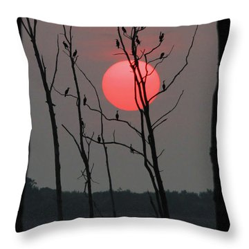 Red Rise Cormorants Throw Pillow