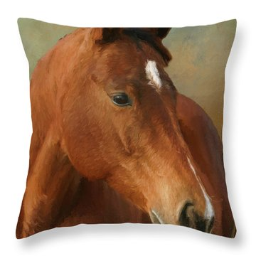 Red River - Painted Throw Pillow