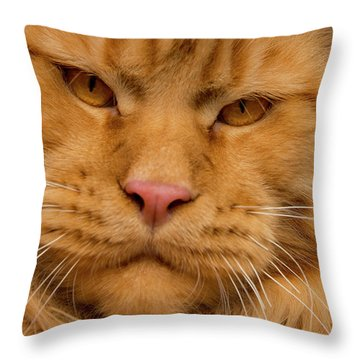 Throw Pillow featuring the photograph RED by Robert Sijka