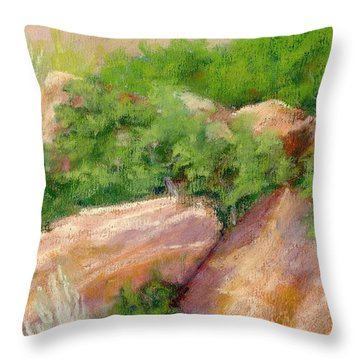 Red Rock And Scrub Oak Throw Pillow