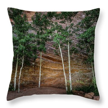 Red Rock Wall Throw Pillow