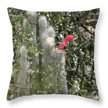 What A Rude Cactus Throw Pillow