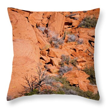 Red Rocks Throw Pillow by Rae Tucker