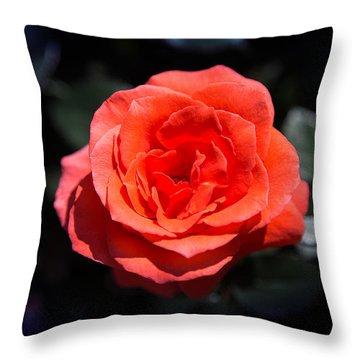 Red Rose Art Throw Pillow