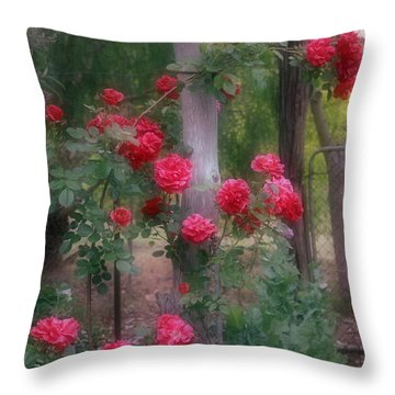 Red Rose Dream Throw Pillow