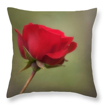 Red Rose Throw Pillow by Jacqui Boonstra