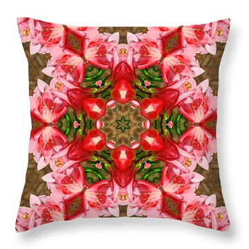 Throw Pillow featuring the photograph Red Rose Kaleidoscope by Bill Barber