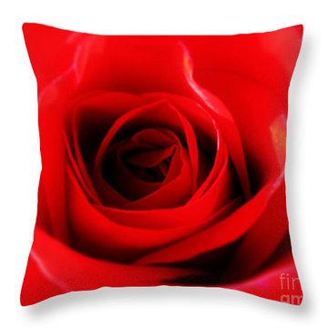 Throw Pillow featuring the photograph Red Rose by Nina Ficur Feenan
