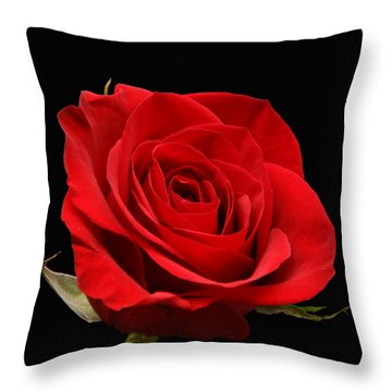 Red Rose On Black 1 Throw Pillow by George Jones