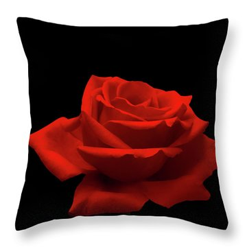 Red Rose On Black Throw Pillow