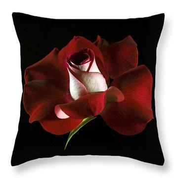 Red Rose Petals Throw Pillow