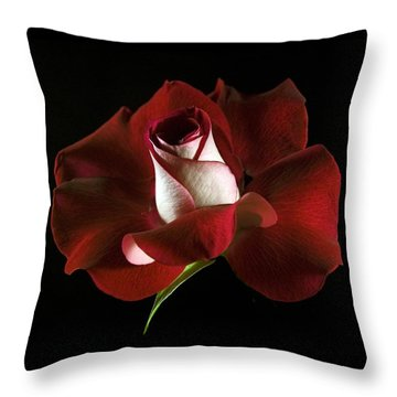 Red Rose Petals Throw Pillow by Elsa Marie Santoro