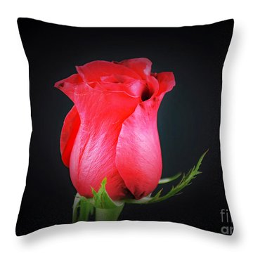 Red Rose Shows Love  Throw Pillow