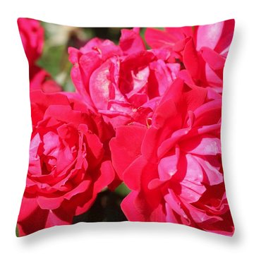 Red Roses 1 Throw Pillow