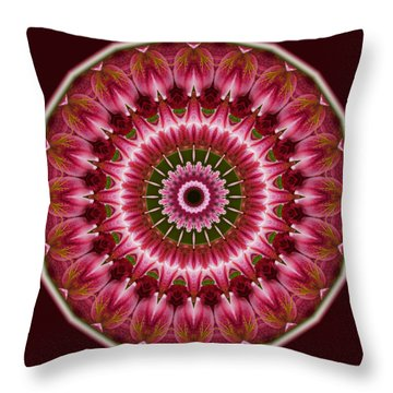 Red Roses And Thorns Throw Pillow